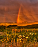 Sunset with rainbow over the Palouse Wheat Fields